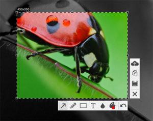 Интерфейс программ для скриншотов